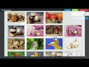BleuPage Pro Review - Complete Social Media Marketing Tool!, http://myonlinebiz4u2.com